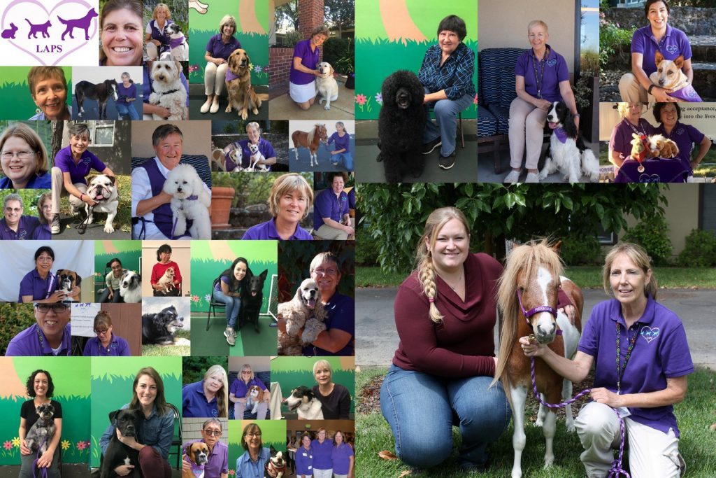 A photo collage of portraits of LAPS teams and LAPS associate members. All members are in their purple uniform shirts and khaki slacks.